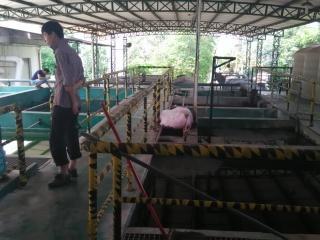 养殖废水处理雷竞技raybet