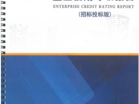 企业信用等级报告
